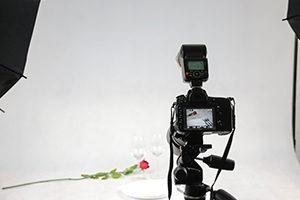 Filmstudio Frankfurt Kosten Preis teuer günstig